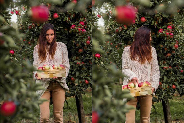 dziewczyna w sadzie z łubianką jabłek