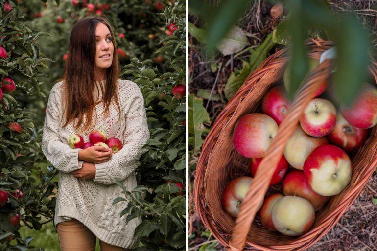 dziewczyna trzymajaca jabłka, koszyk z jabłkami w sadzie